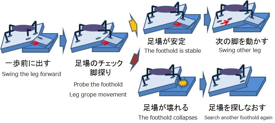 The flow of Leg-grope-walk